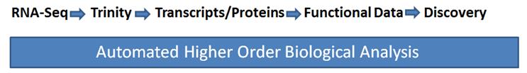 搜索其他学者的RNA数据处理流程1092