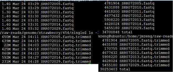 草莓基因组数据预处理214