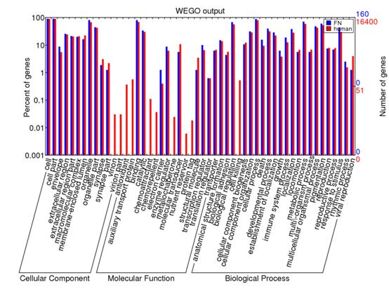 转录组-GO通路注释-WEGO网站使用420
