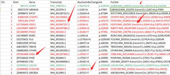 对snp进行注释并格式化输出157