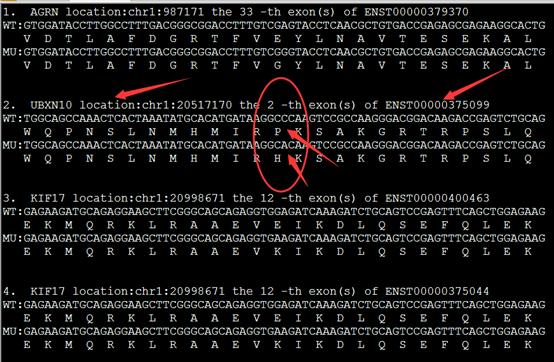 对snp进行注释并格式化输出270