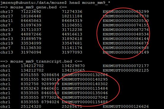 RNA-seq流程对基因和转录本的表达量的计算170