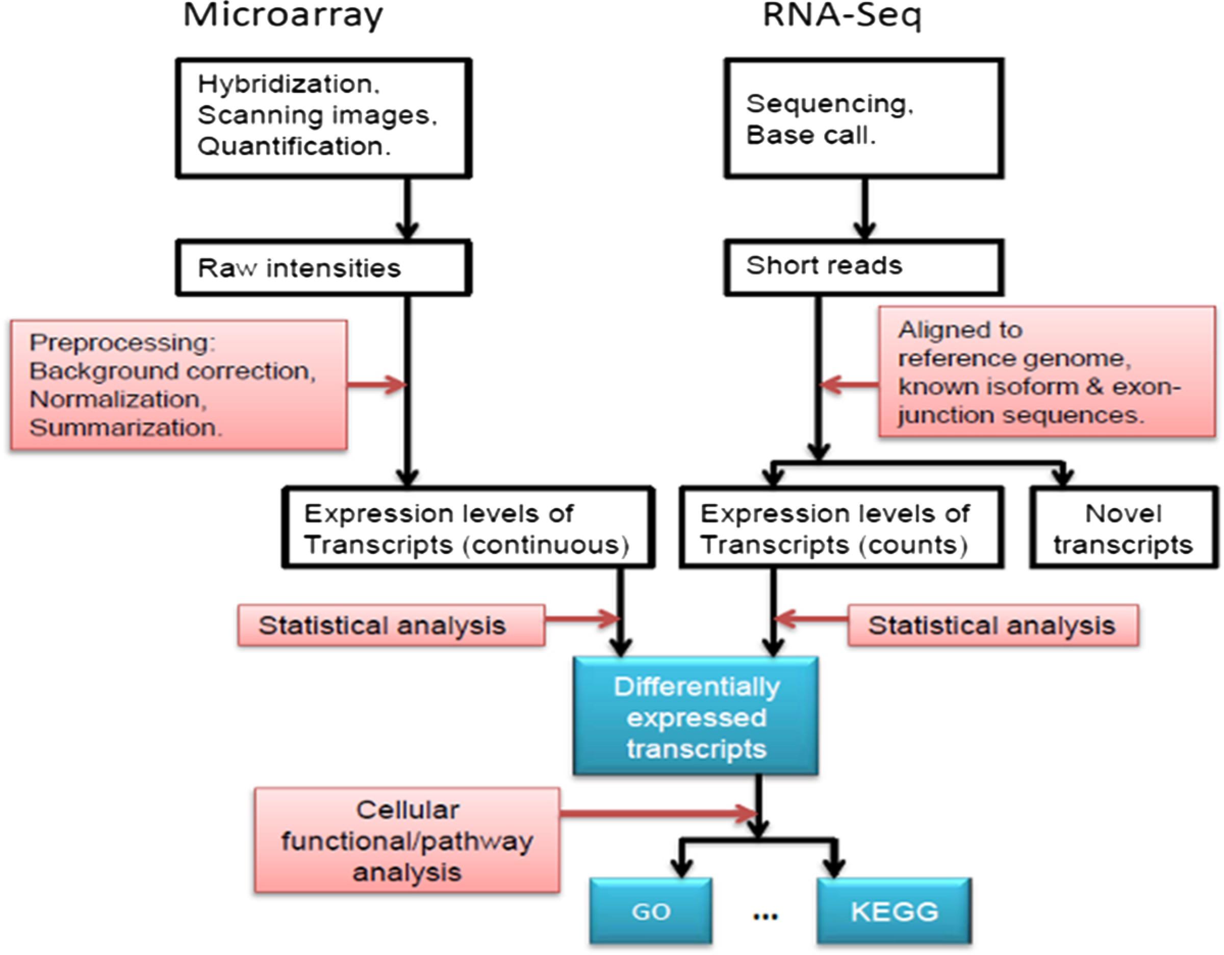 rna-seq-vs-microarray-2