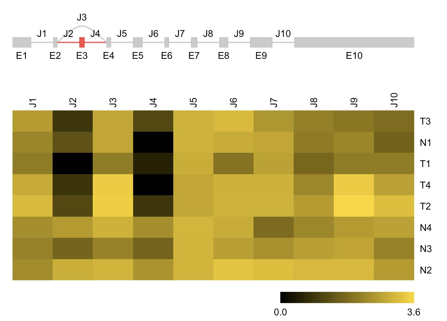transcript-variant-bioconductor-sgseq