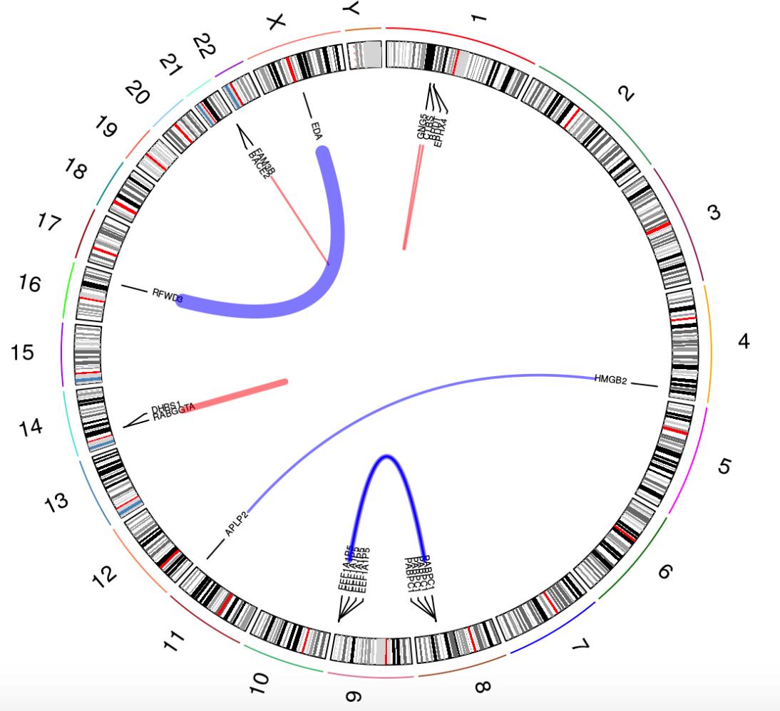 chimeraviz-fusion-circle-plot