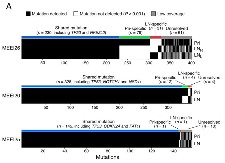 wes-mutation-primary-vs-metastatics