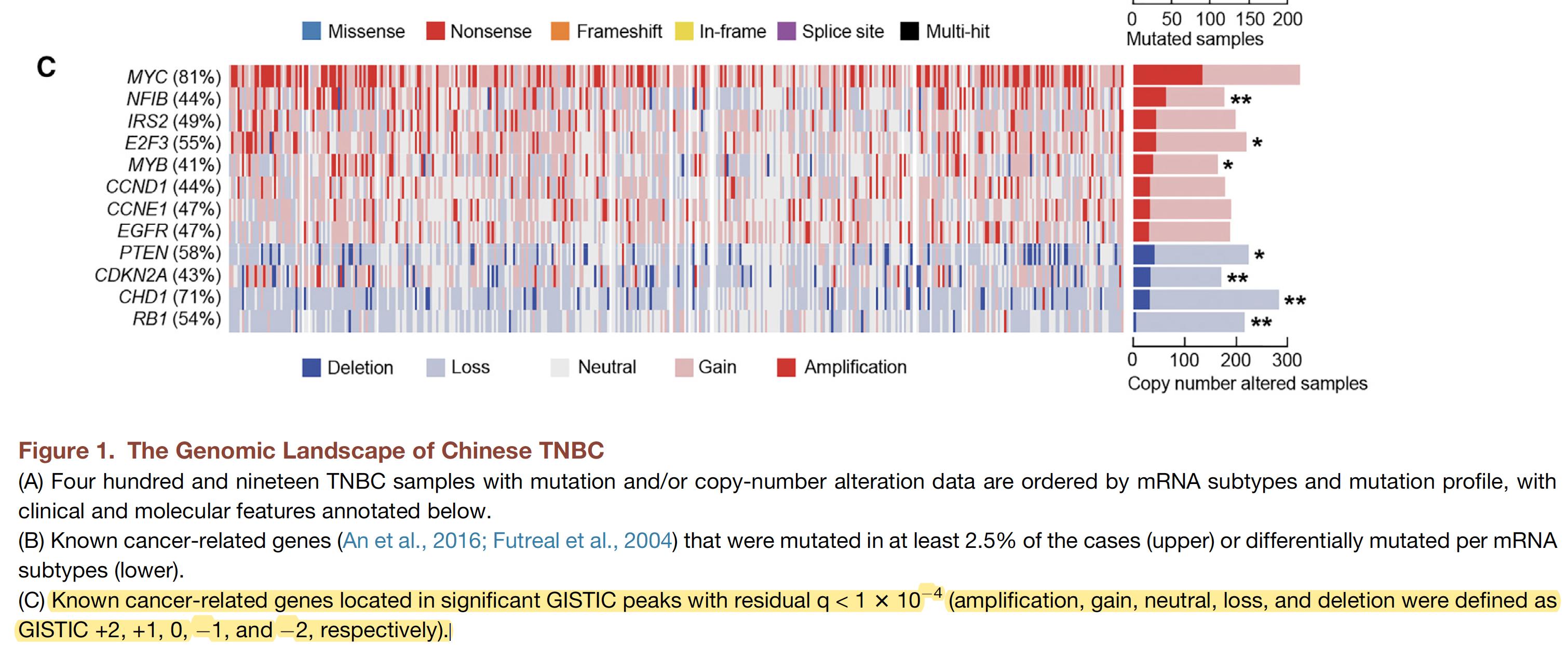 Chinese-TNBC-CNV-pattern.png