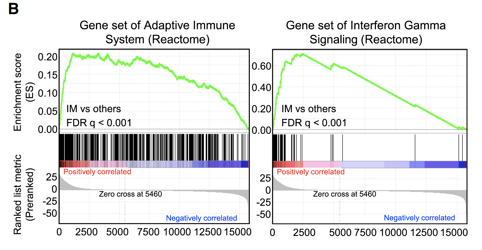 GSEA-Reactome-IM-subtypes-VS-others.png