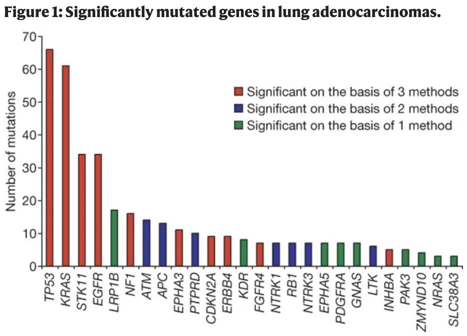 肺腺癌特异性突变基因