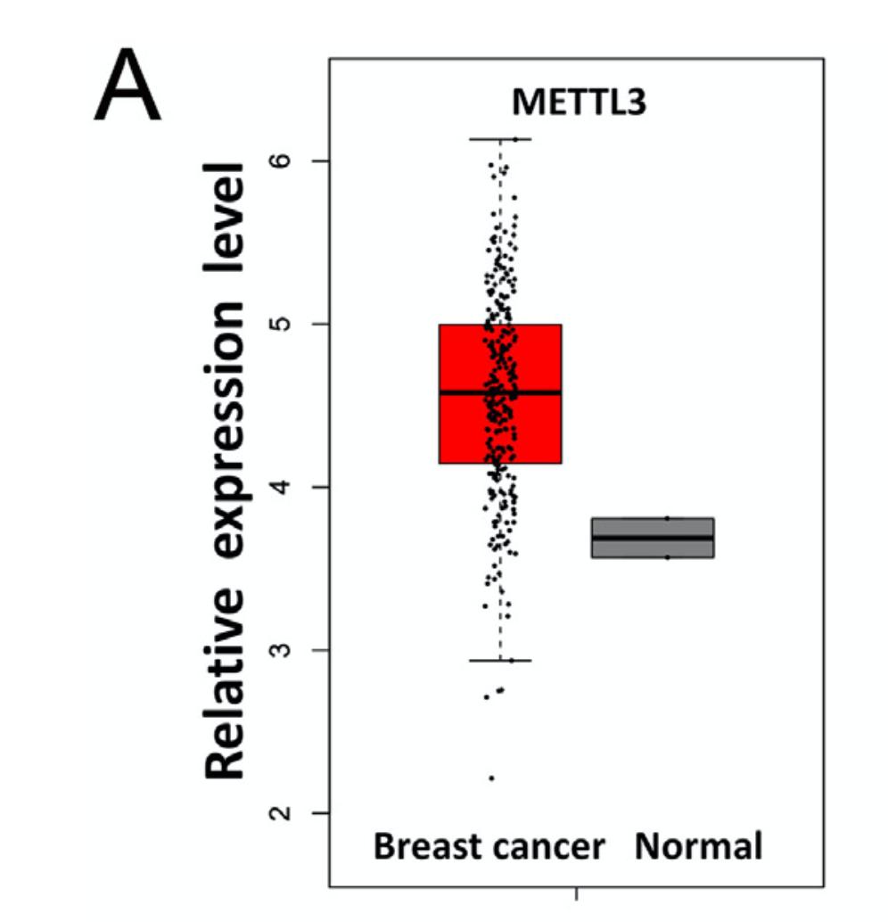 肿瘤样品的基因在mRNA水平高表达