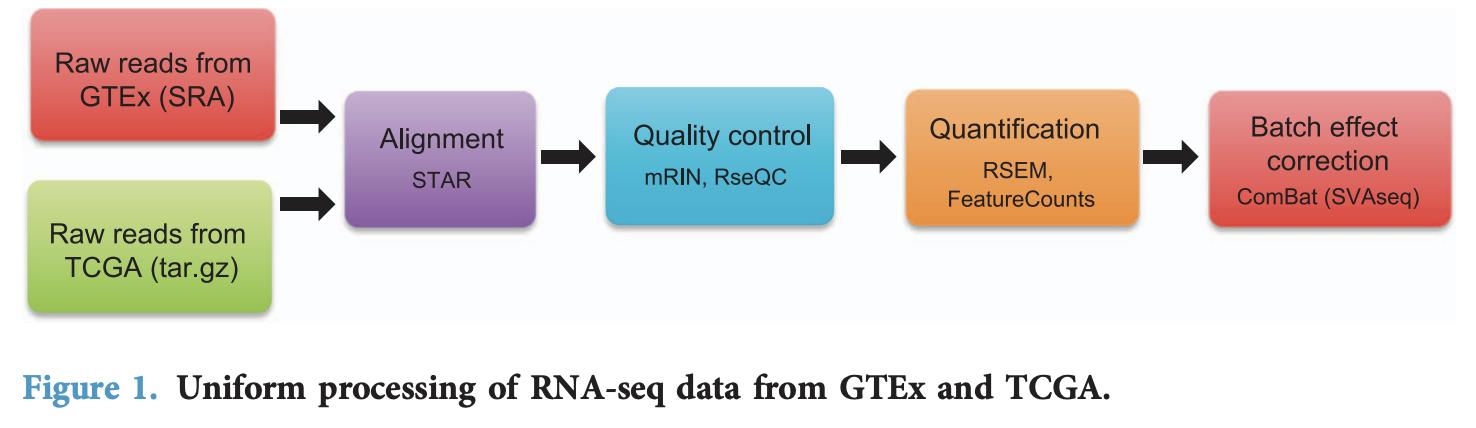 统一TCGA和GTEx定量流程