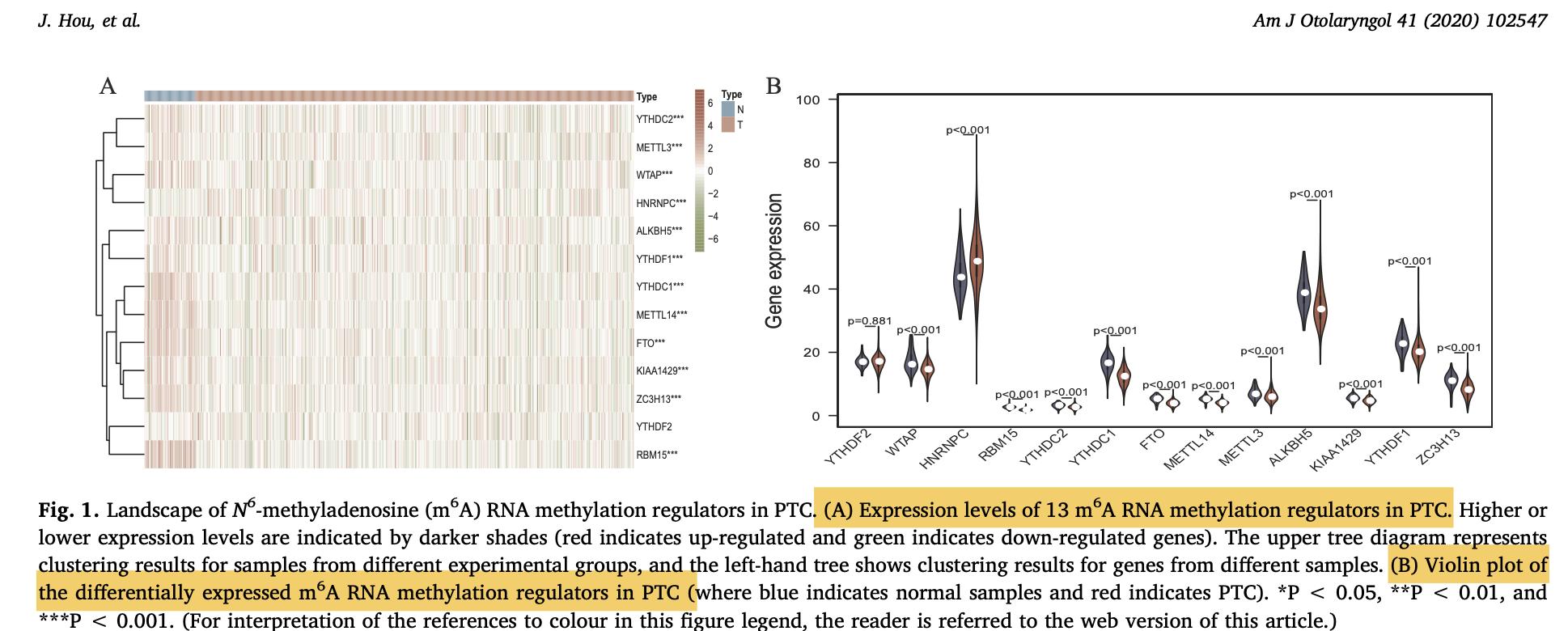 第一篇的m6a相关基因集的表达量差异热图